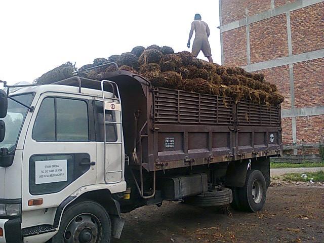Fully Loaded Truck